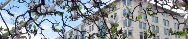 cropped-elliott-school-building.jpg