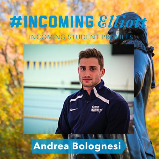 Blog_ #EI Bolognesi.png